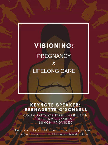 Visioning  Pregnancy Lifelong Care 1