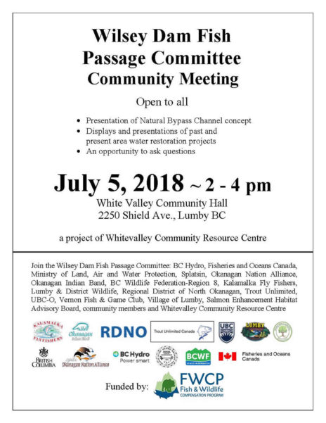 Community Meeting Poster July 5